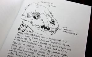 Fure Hides and bones 4