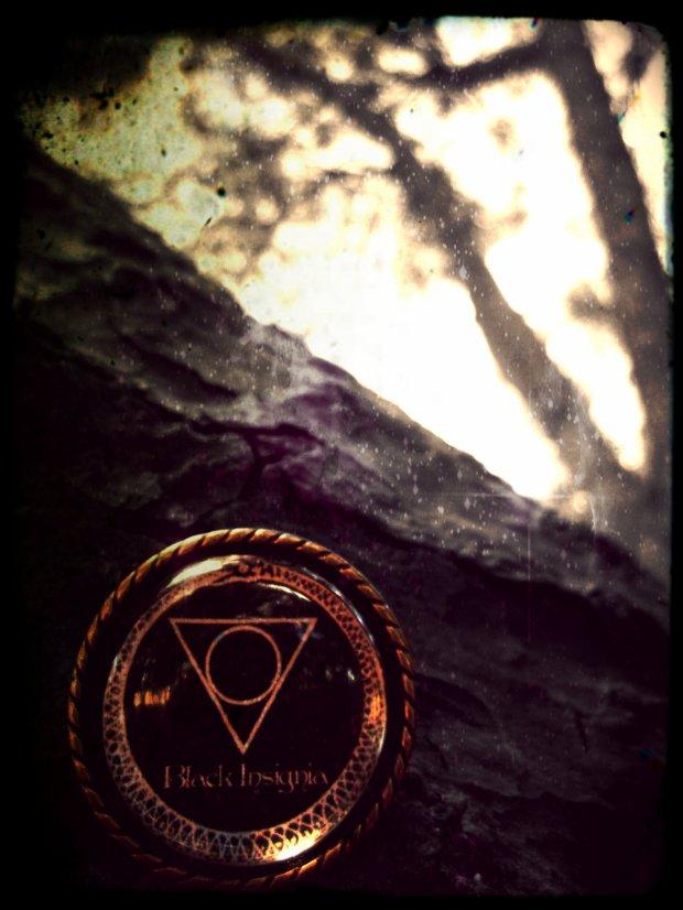 Black Insignia - 9 - Black Insignia Logo  Own