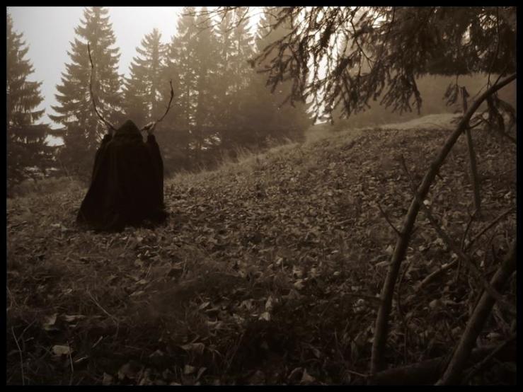 Forgotten Cult