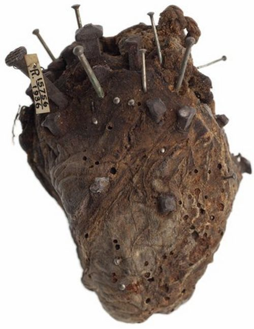 Sheep's heart, stuck with nails and pins. Said to have been used to break a spell cast by a witch over a farmer's cattle.