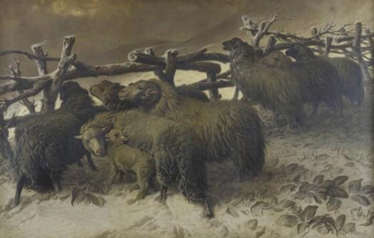 moutons-dans-la-neige-le-plessis-trevise