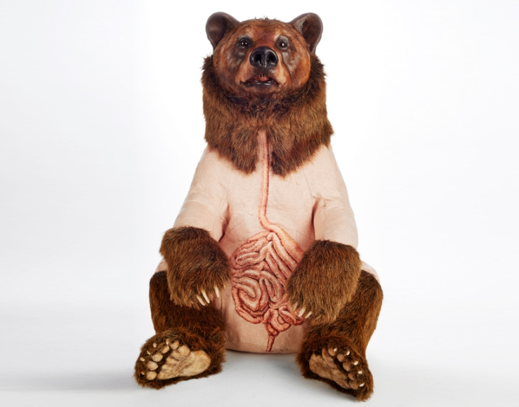 deborah-simon-bears-designboom-05