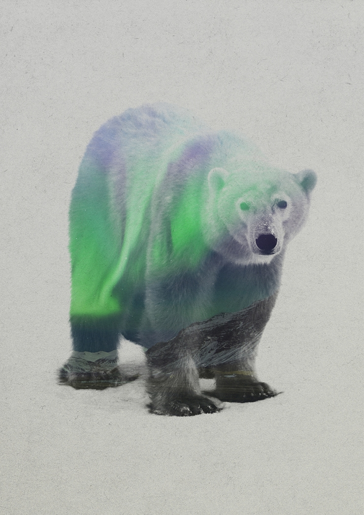Aurora-Borealis-Double-Exposure5__880