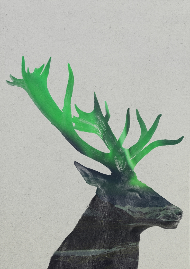 Double-Exposure-Of-Animals-In-The-Aurora-Borealis4__880
