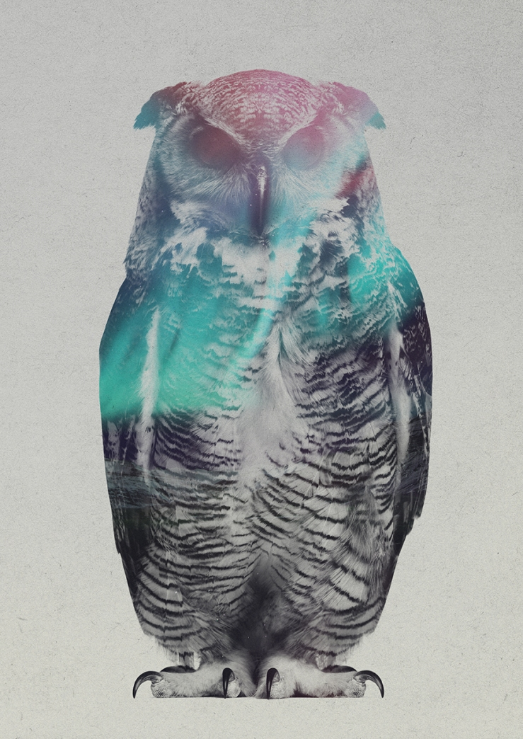 Double-Exposure-Of-Animals-In-The-Aurora-Borealis5__880