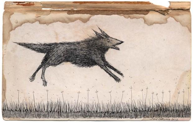 levitating-wolf-2
