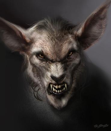 Coyote 9
