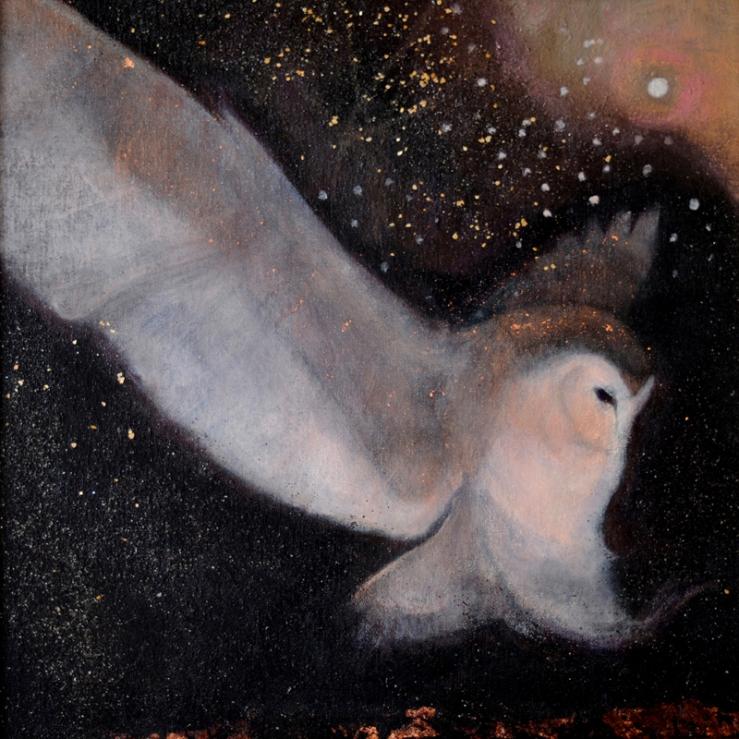 soft-night-descending